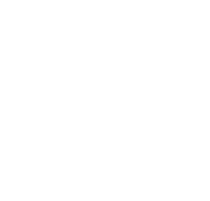icon-number1